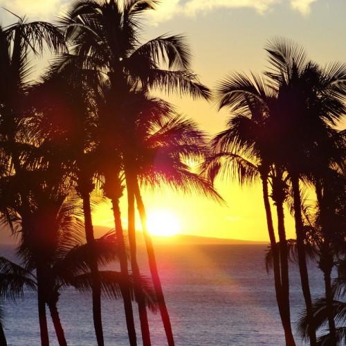 Escapade de Dubaï au soleil d'Hawaï  ( durée  2H )